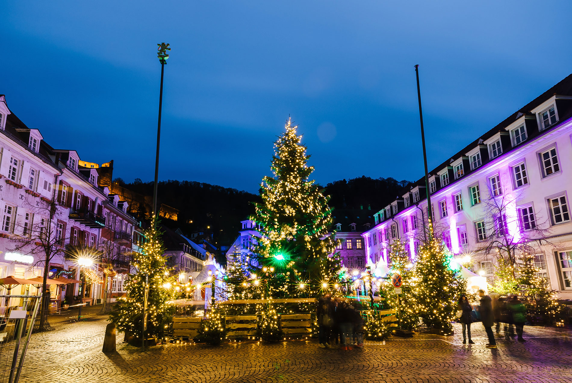 Christmas Trees lit up in Heidelberg, Germany