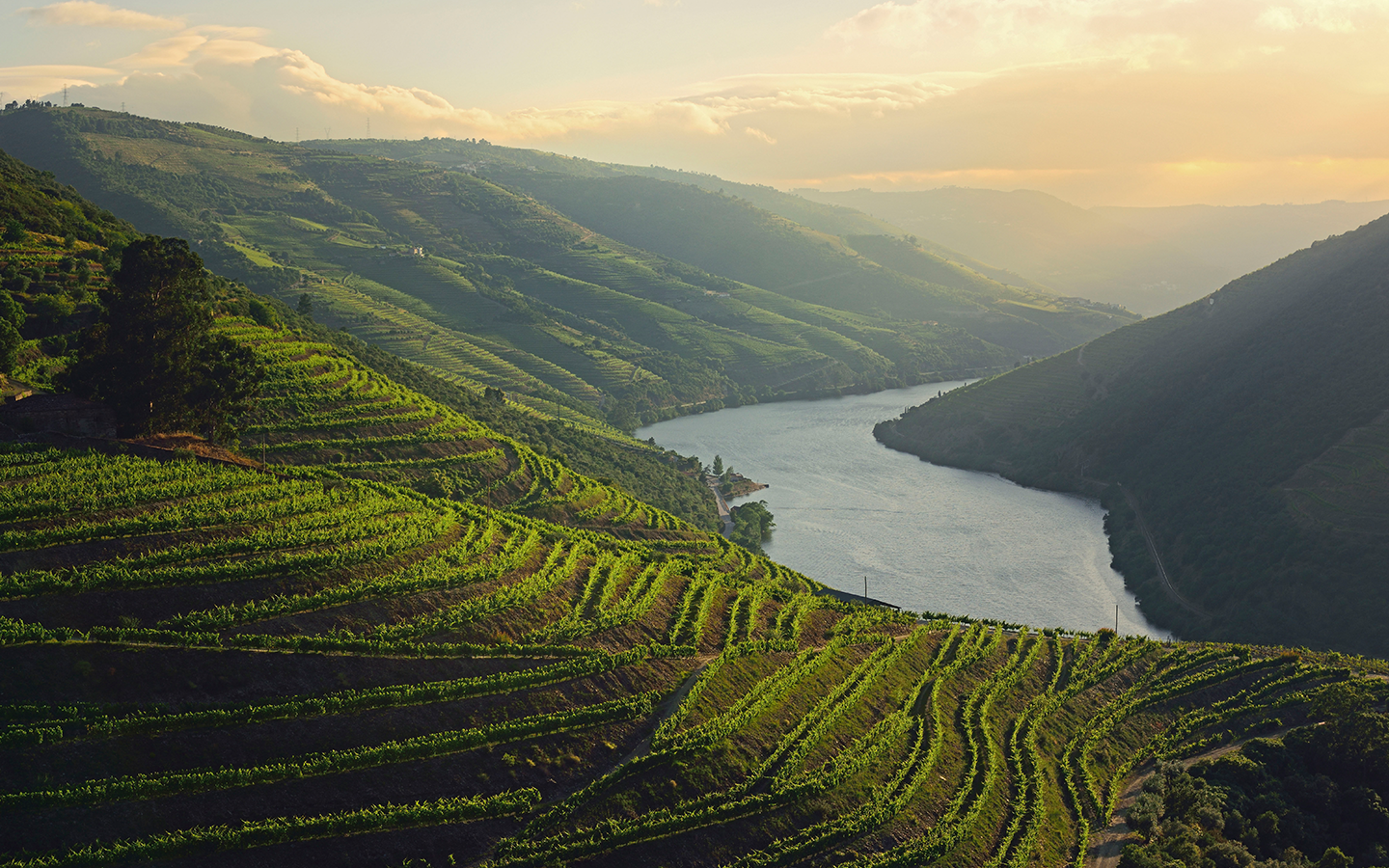 Douro Valley sunset, Portugal